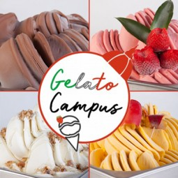 Gelato Campus Online Training  (3 days)