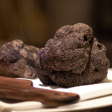 The Foodie : Black Truffles Extravaganza